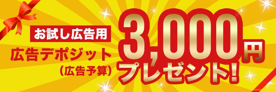 Buffet3000円プレゼント